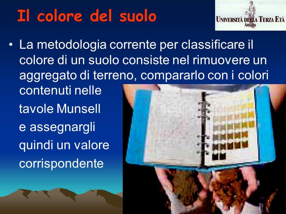 La metodologia corrente per classificare il colore di un suolo consiste nel rimuovere un aggregato di terreno, compararlo con i colori contenuti nelle