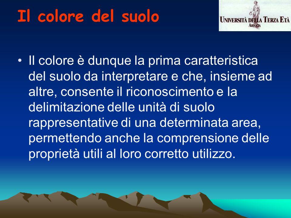 Il colore è dunque la prima caratteristica del suolo da interpretare e che, insieme ad altre, consente il riconoscimento e la delimitazione delle unit
