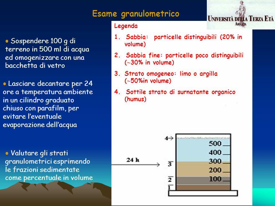 Esame granulometrico Sospendere 100 g di terreno in 500 ml di acqua ed omogenizzare con una bacchetta di vetro Lasciare decantare per 24 ore a tempera