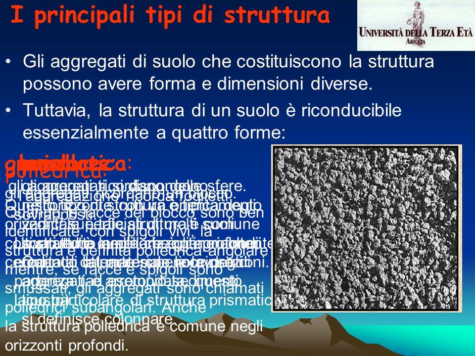 I principali tipi di struttura Gli aggregati di suolo che costituiscono la struttura possono avere forma e dimensioni diverse. Tuttavia, la struttura