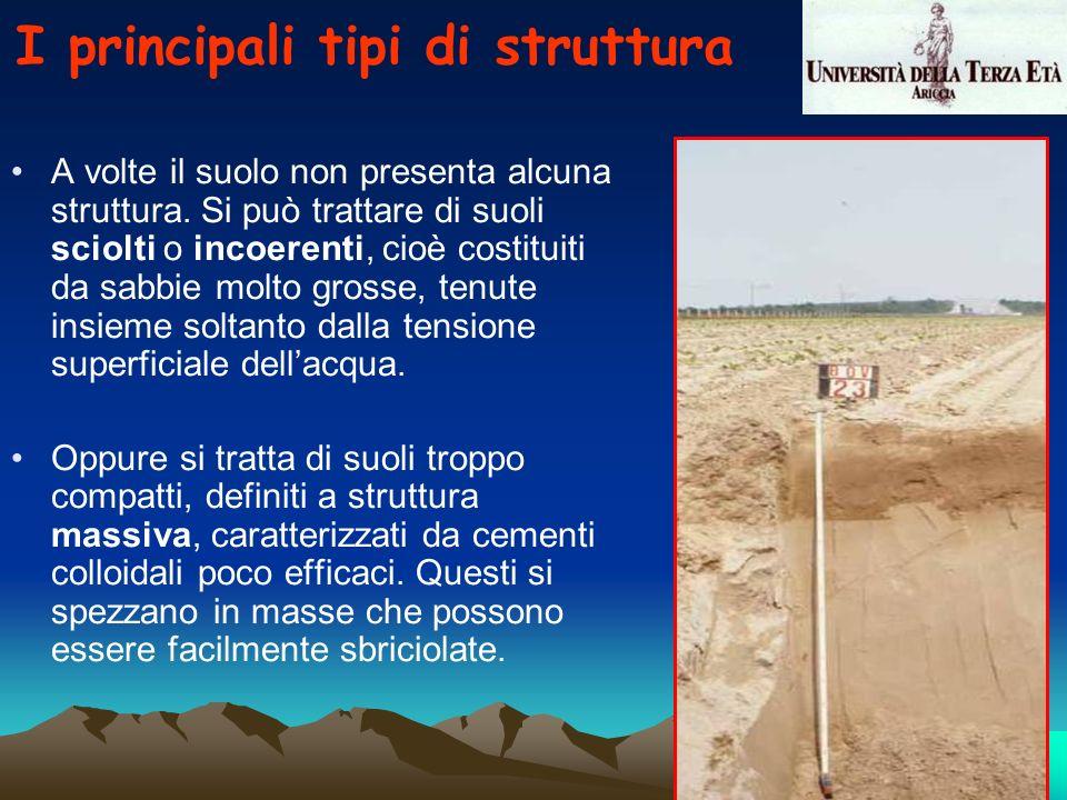 A volte il suolo non presenta alcuna struttura. Si può trattare di suoli sciolti o incoerenti, cioè costituiti da sabbie molto grosse, tenute insieme