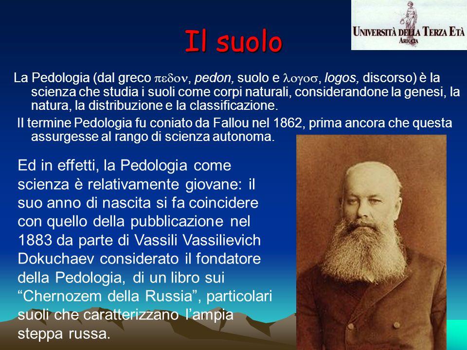 La Pedologia (dal greco, pedon, suolo e, logos, discorso) è la scienza che studia i suoli come corpi naturali, considerandone la genesi, la natura, la