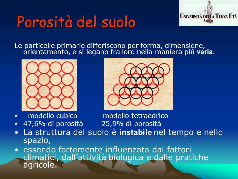 Le particelle primarie differiscono per forma, dimensione, orientamento, e si legano fra loro nella maniera più varia. modello cubico modello tetraedr