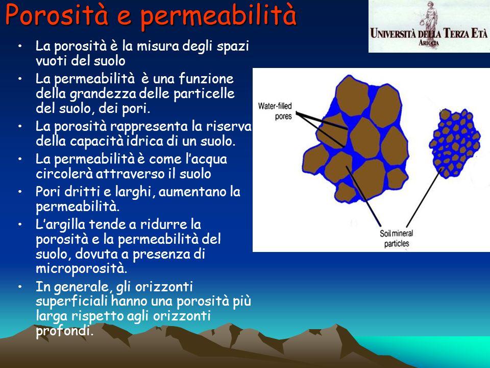 Porosità e permeabilità La porosità è la misura degli spazi vuoti del suolo La permeabilità è una funzione della grandezza delle particelle del suolo,