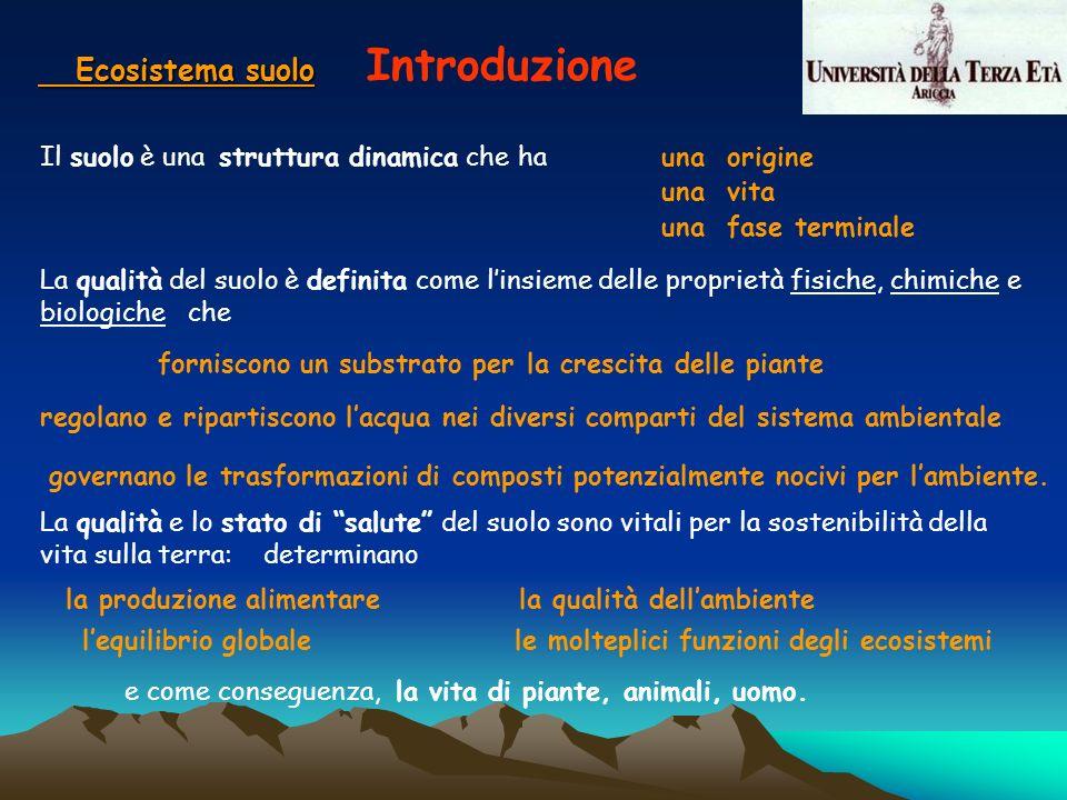 Ecosistema suolo Ecosistema suolo Introduzione Il suolo è una struttura dinamica che hauna origine una vita una fase terminale La qualità e lo stato d