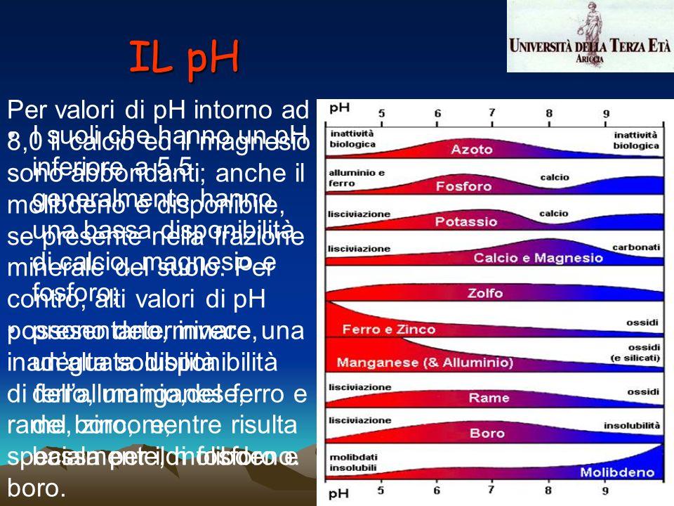 I suoli che hanno un pH inferiore a 5,5 generalmente hanno una bassa disponibilità di calcio, magnesio e fosforo; presentano, invece, unalta solubilit