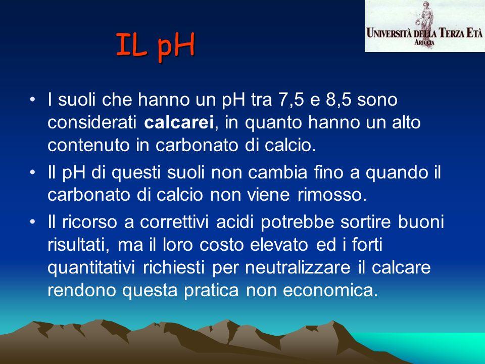 I suoli che hanno un pH tra 7,5 e 8,5 sono considerati calcarei, in quanto hanno un alto contenuto in carbonato di calcio. Il pH di questi suoli non c
