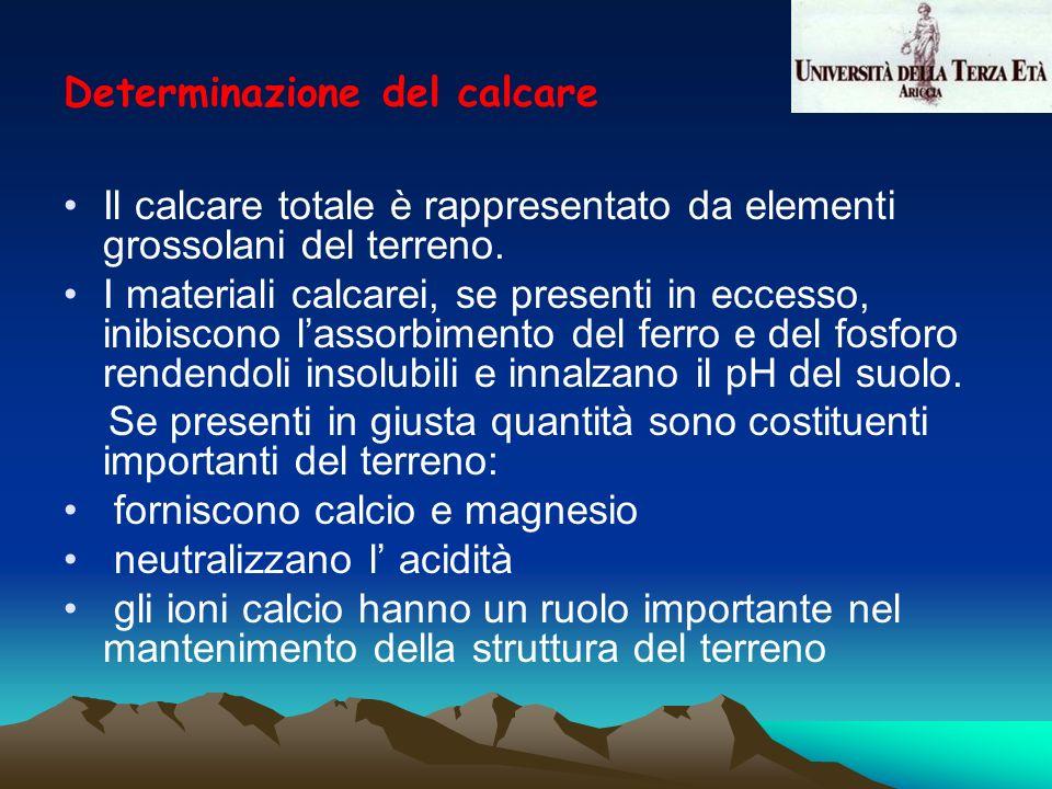 Il calcare totale è rappresentato da elementi grossolani del terreno. I materiali calcarei, se presenti in eccesso, inibiscono lassorbimento del ferro