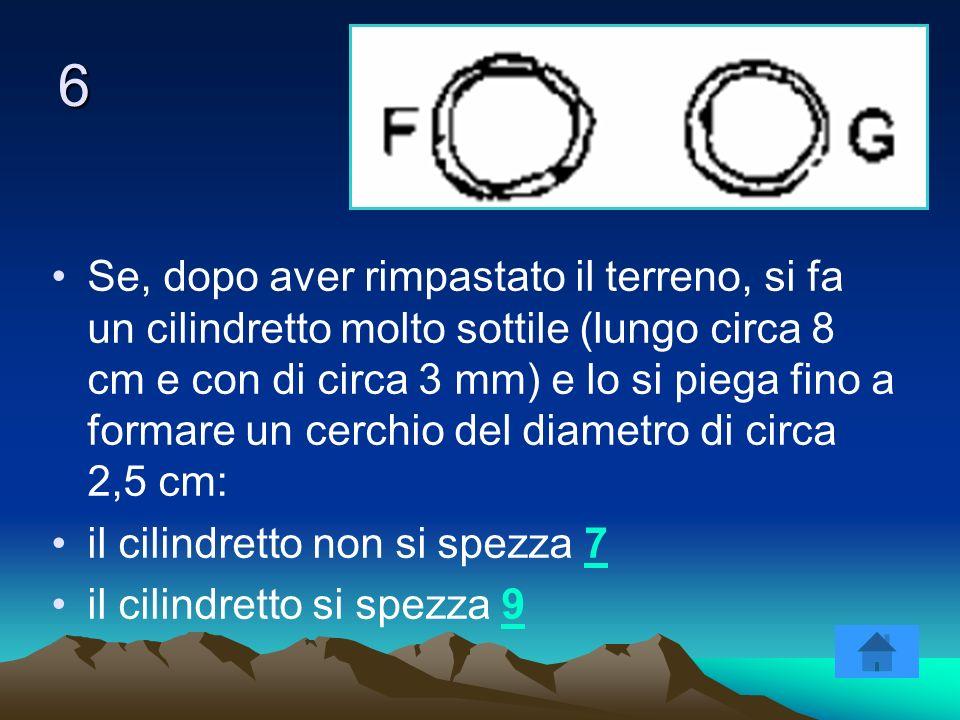 6 Se, dopo aver rimpastato il terreno, si fa un cilindretto molto sottile (lungo circa 8 cm e con di circa 3 mm) e lo si piega fino a formare un cerch