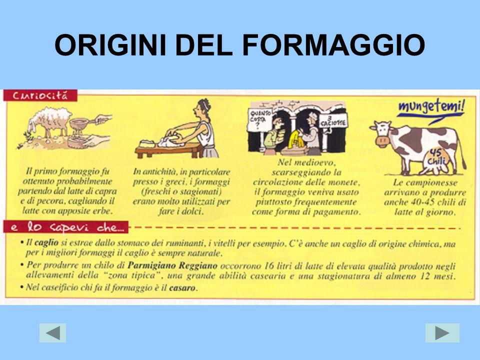ORIGINI DEL FORMAGGIO