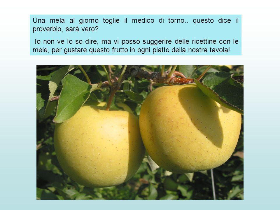 Una mela al giorno toglie il medico di torno.. questo dice il proverbio, sarà vero? Io non ve lo so dire, ma vi posso suggerire delle ricettine con le
