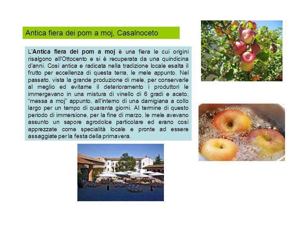 Antica fiera dei pom a moj, Casalnoceto L'Antica fiera dei pom a moj è una fiera le cui origini risalgono all'Ottocento e si è recuperata da una quind