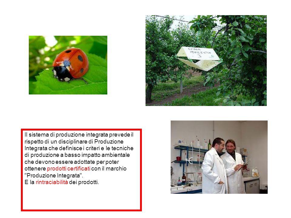 Il sistema di produzione integrata prevede il rispetto di un disciplinare di Produzione Integrata che definisce i criteri e le tecniche di produzione
