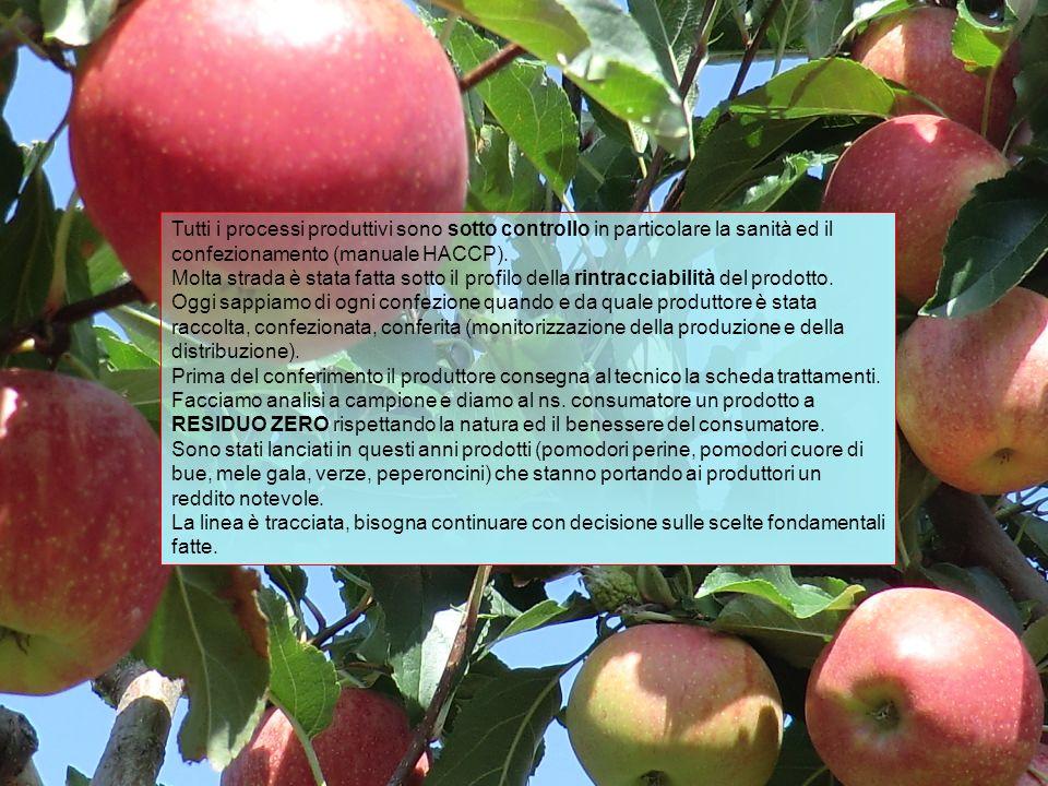 Una mela al giorno toglie il medico di torno..questo dice il proverbio, sarà vero.