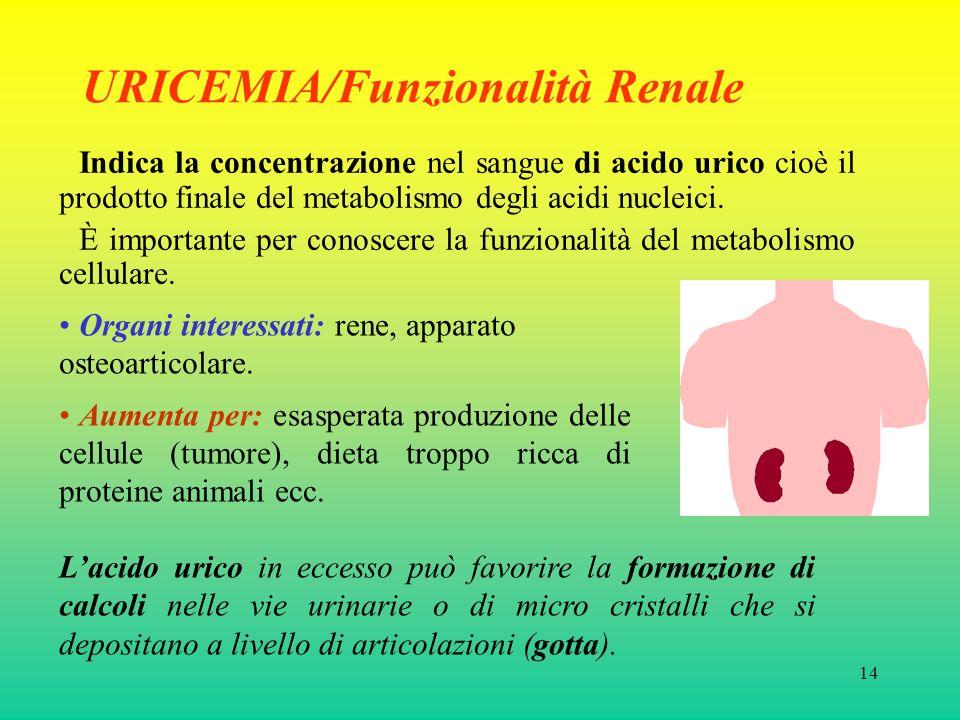 14 URICEMIA/Funzionalità Renale Indica la concentrazione nel sangue di acido urico cioè il prodotto finale del metabolismo degli acidi nucleici.