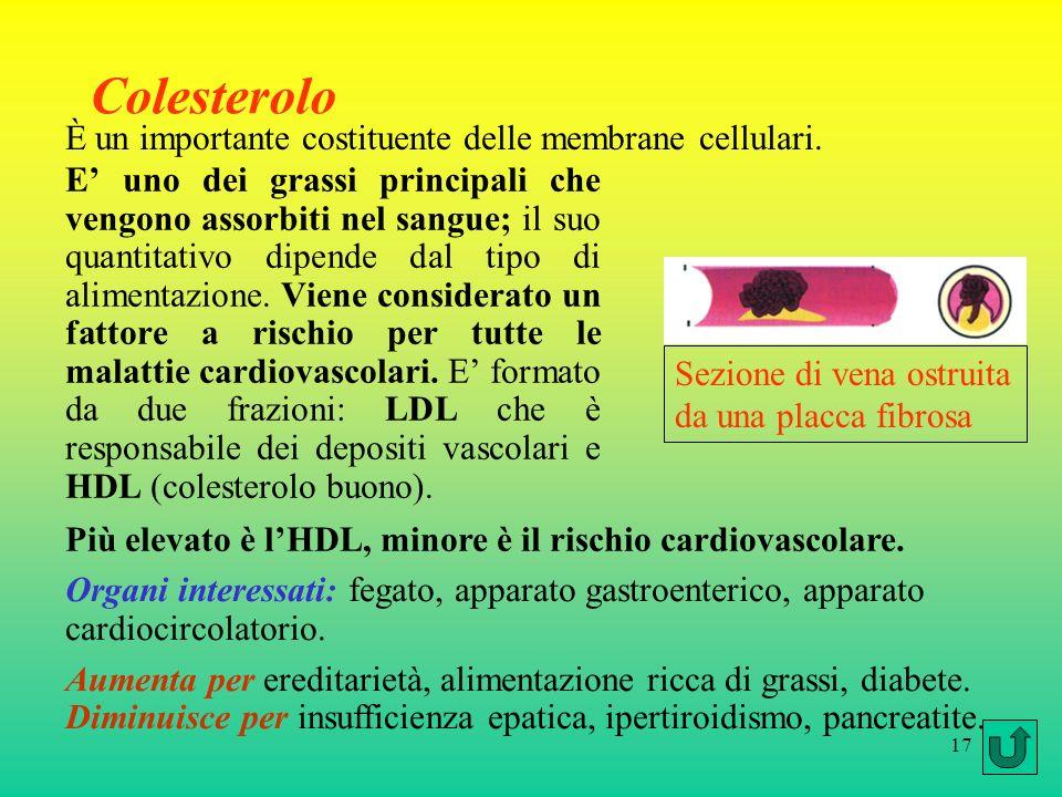 17 Colesterolo E uno dei grassi principali che vengono assorbiti nel sangue; il suo quantitativo dipende dal tipo di alimentazione. Viene considerato