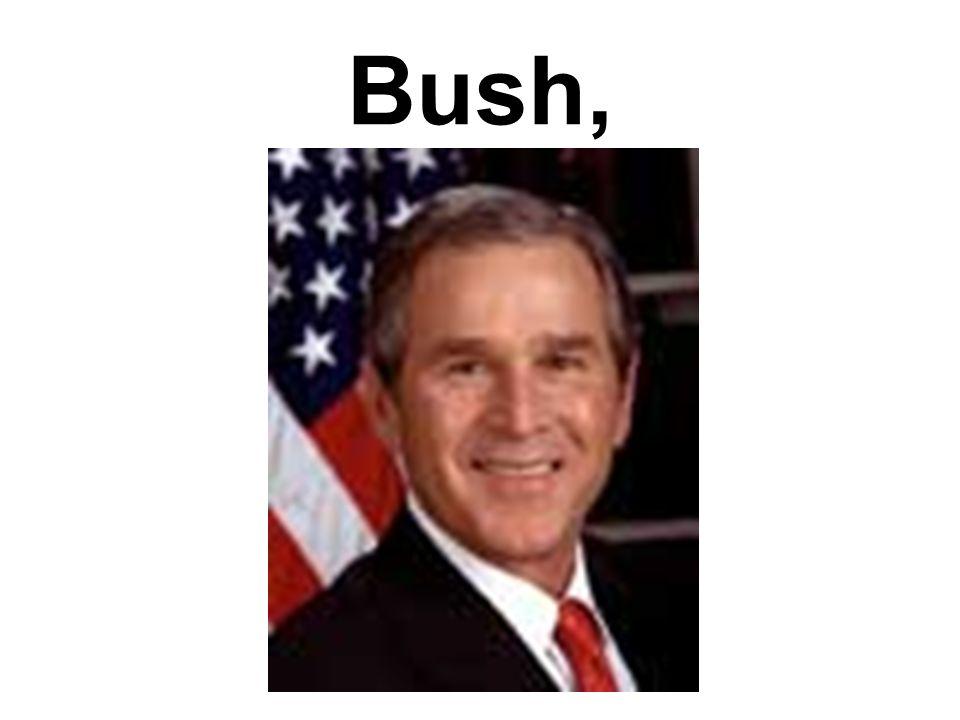 Bush,