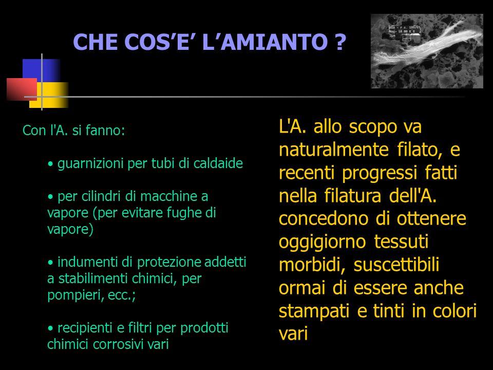 CHE COSE LAMIANTO .L A.