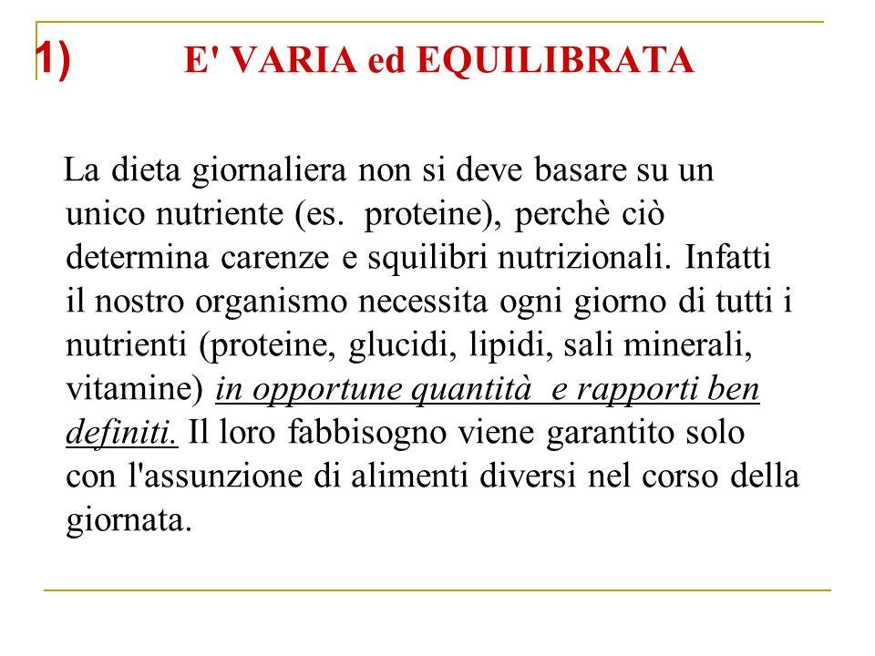 1) E VARIA ed EQUILIBRATA La dieta giornaliera non si deve basare su un unico nutriente (es.
