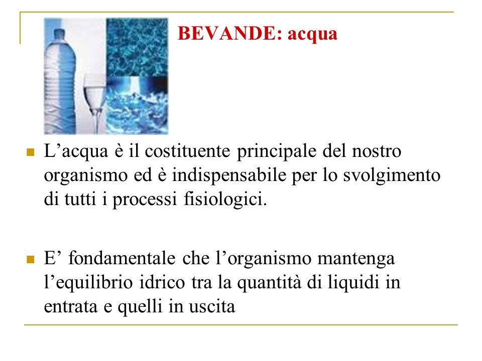 BEVANDE: acqua Lacqua è il costituente principale del nostro organismo ed è indispensabile per lo svolgimento di tutti i processi fisiologici.