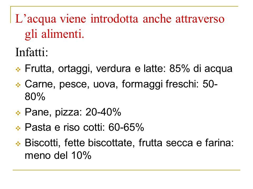 Lacqua viene introdotta anche attraverso gli alimenti.
