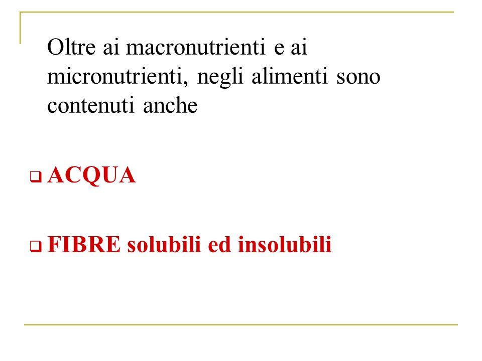 Oltre ai macronutrienti e ai micronutrienti, negli alimenti sono contenuti anche ACQUA FIBRE solubili ed insolubili