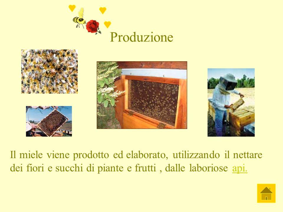 Produzione Il miele viene prodotto ed elaborato, utilizzando il nettare dei fiori e succhi di piante e frutti, dalle laboriose api.api.