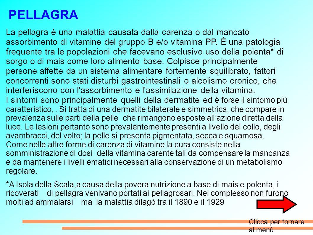 PELLAGRA La pellagra è una malattia causata dalla carenza o dal mancato assorbimento di vitamine del gruppo B e/o vitamina PP.