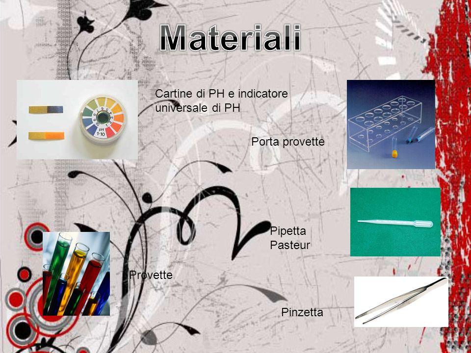 Cartine di PH e indicatore universale di PH Porta provette Provette Pipetta Pasteur Pinzetta