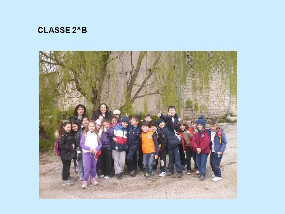 CLASSE 2^B