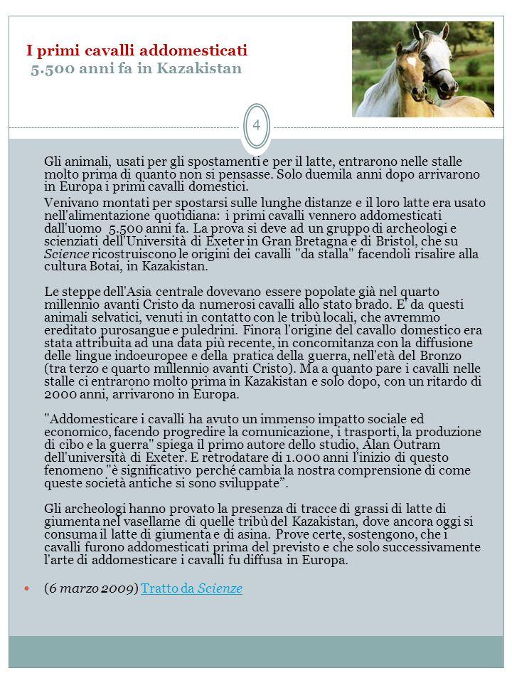 I cavalli di San Marco a Venezia Analisi stilistica Anche le teorie degli ultimi anni propongono datazioni oscillanti fra letà di Lisippo (IV secolo a.