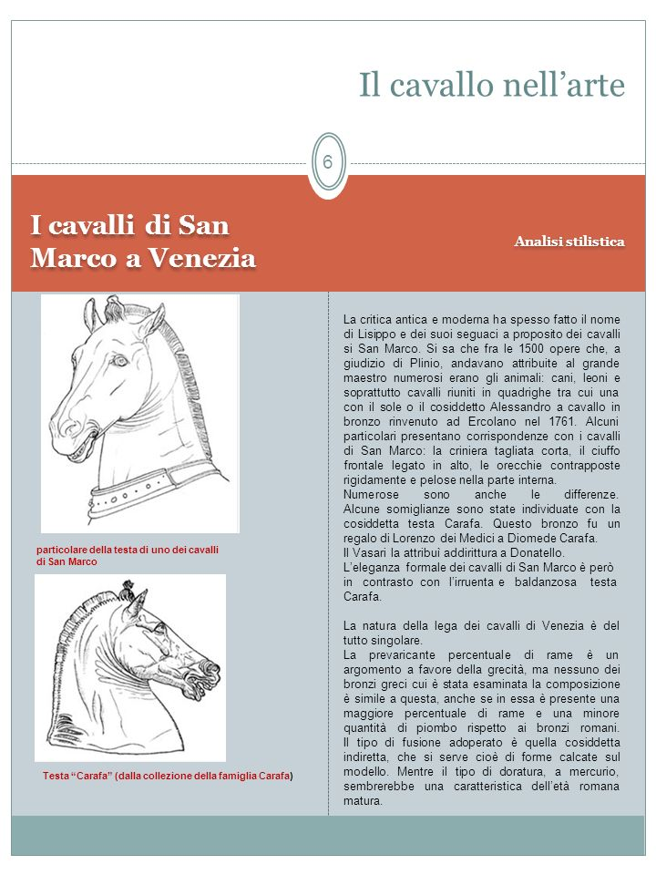 I cavalli di San Marco a Venezia Analisi stilistica Il cavallo nellarte Testa Carafa (dalla collezione della famiglia Carafa) particolare della testa