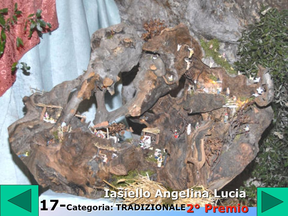 1 6 16 - Categoria: INNOVATIVO Zucchi Maria Libera