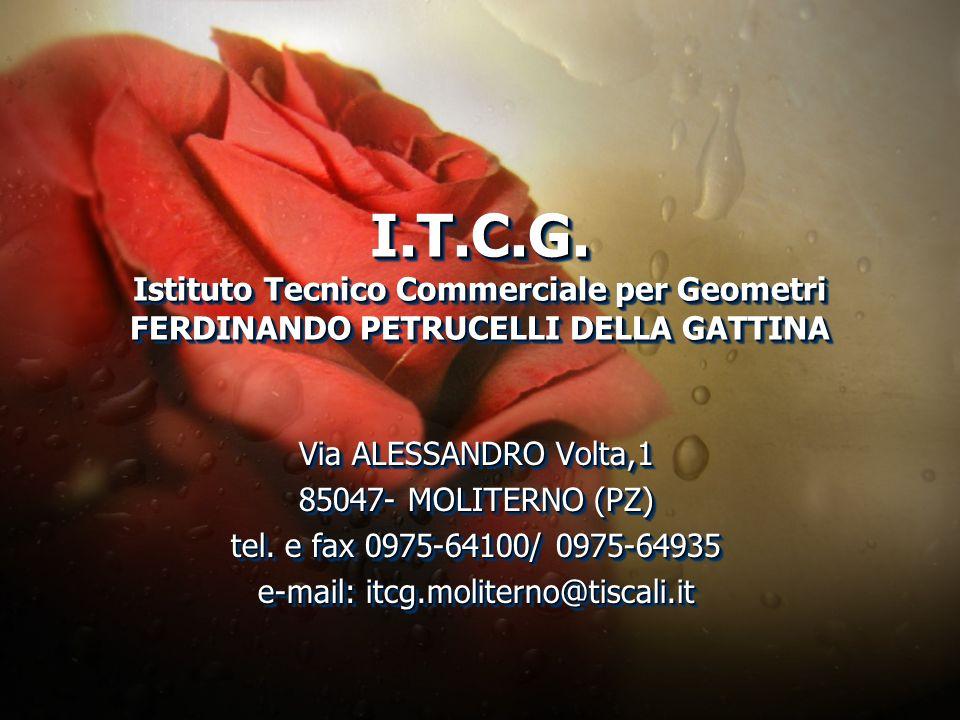I.T.C.G. Istituto Tecnico Commerciale per Geometri FERDINANDO PETRUCELLI DELLA GATTINA I.T.C.G. Istituto Tecnico Commerciale per Geometri FERDINANDO P