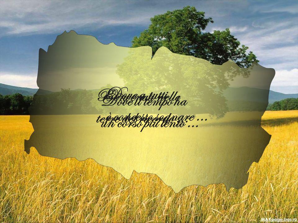 Benvenuti nelle terre del ricordo... Dove il tempo ha un corso più lento … Dove a tutti è concesso sognare …