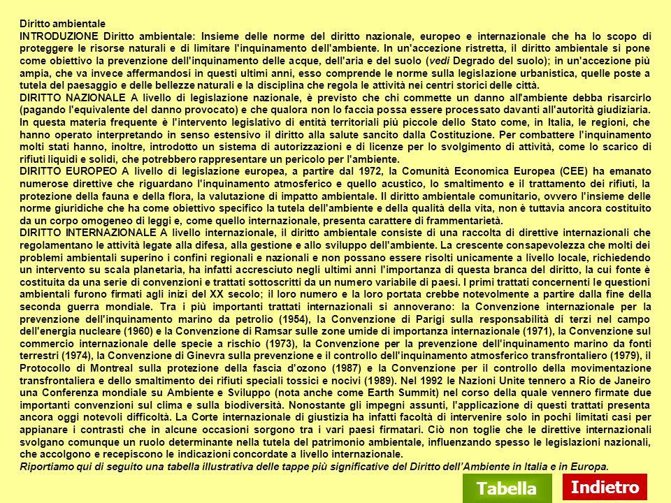 Diritto ambientale INTRODUZIONE Diritto ambientale: Insieme delle norme del diritto nazionale, europeo e internazionale che ha lo scopo di proteggere