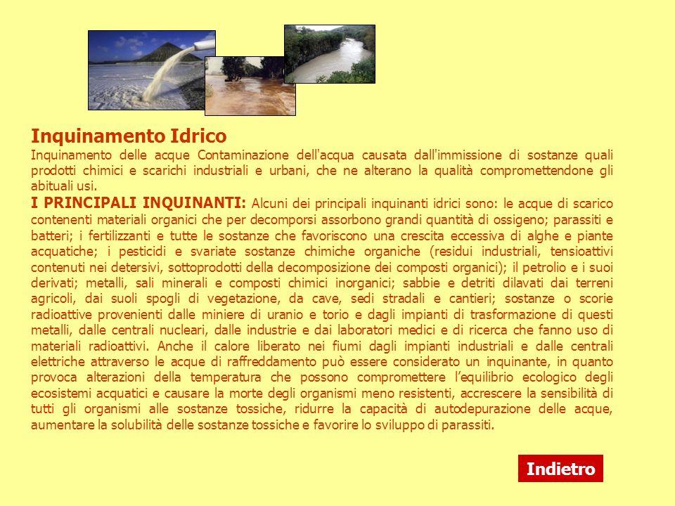 Inquinamento Idrico Inquinamento delle acque Contaminazione dell'acqua causata dall'immissione di sostanze quali prodotti chimici e scarichi industria