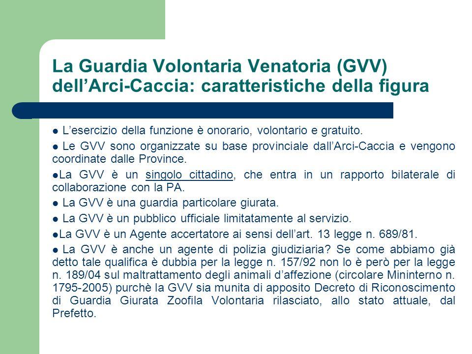 La Guardia Volontaria Venatoria (GVV) dellArci-Caccia: caratteristiche della figura Lesercizio della funzione è onorario, volontario e gratuito. Le GV