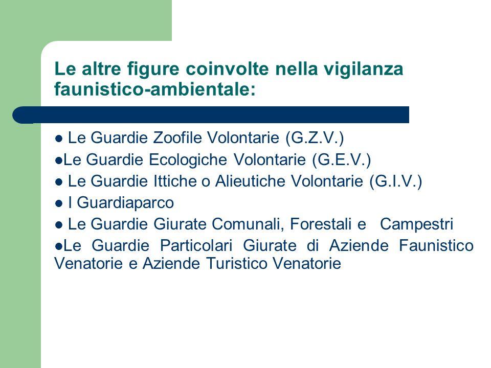 Le altre figure coinvolte nella vigilanza faunistico-ambientale: Le Guardie Zoofile Volontarie (G.Z.V.) Le Guardie Ecologiche Volontarie (G.E.V.) Le G