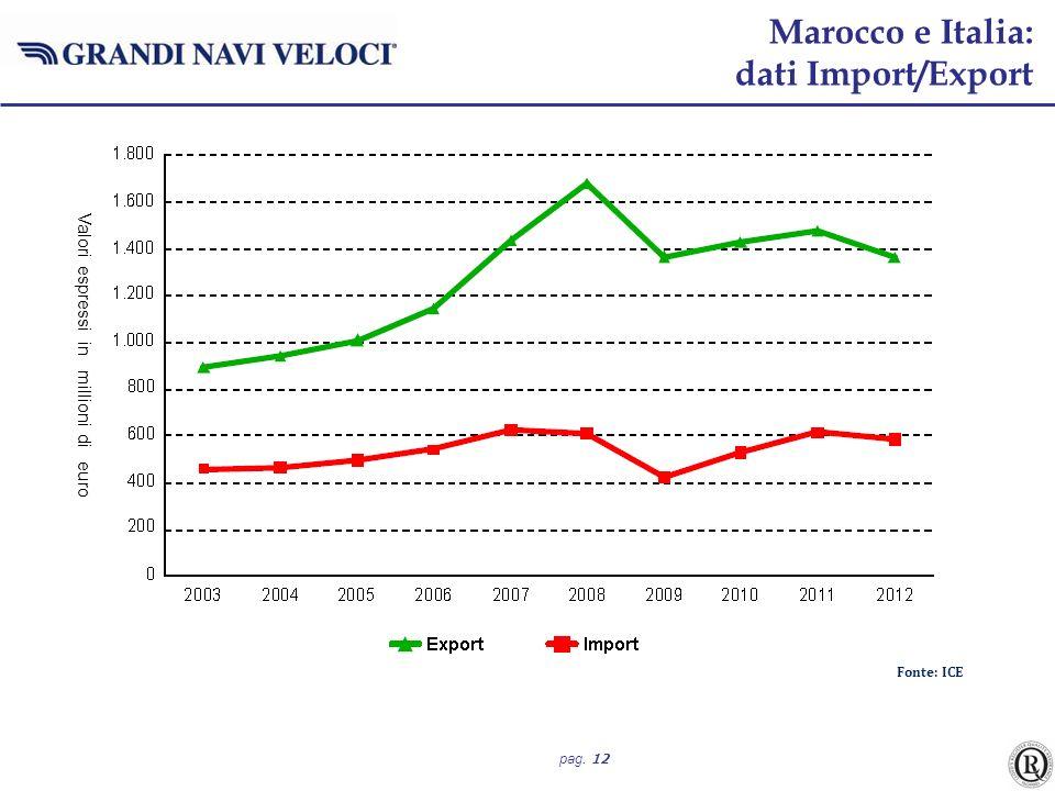 pag. 12 Fonte: ICE Marocco e Italia: dati Import/Export Valori espressi in millioni di euro