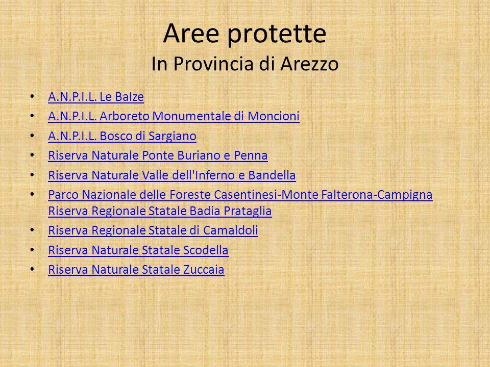 Aree protette In Provincia di Arezzo A.N.P.I.L. Le Balze A.N.P.I.L. Arboreto Monumentale di Moncioni A.N.P.I.L. Bosco di Sargiano Riserva Naturale Pon