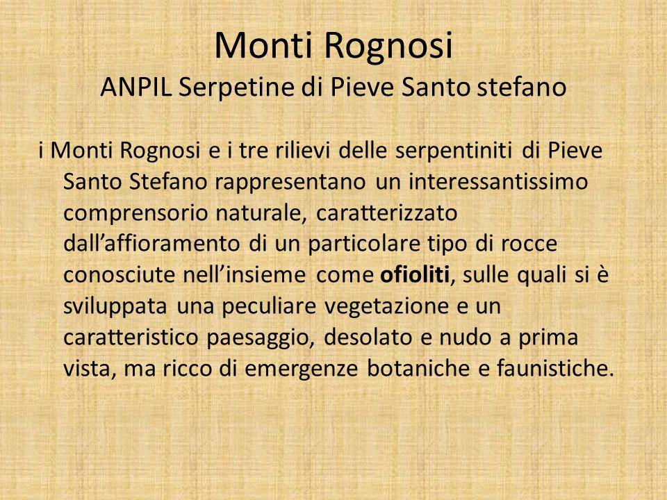 Monti Rognosi ANPIL Serpetine di Pieve Santo stefano i Monti Rognosi e i tre rilievi delle serpentiniti di Pieve Santo Stefano rappresentano un intere