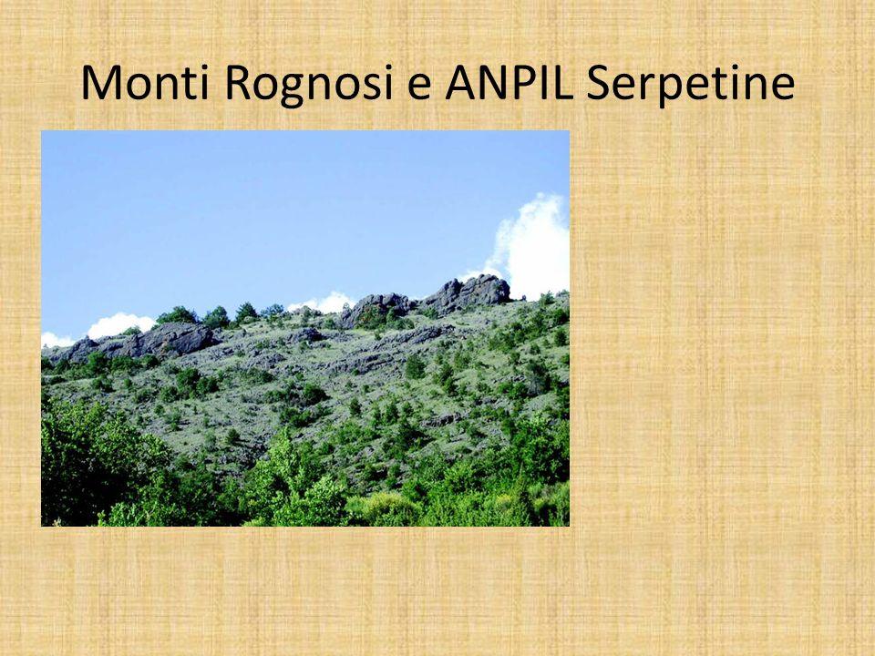 Monti Rognosi e ANPIL Serpetine