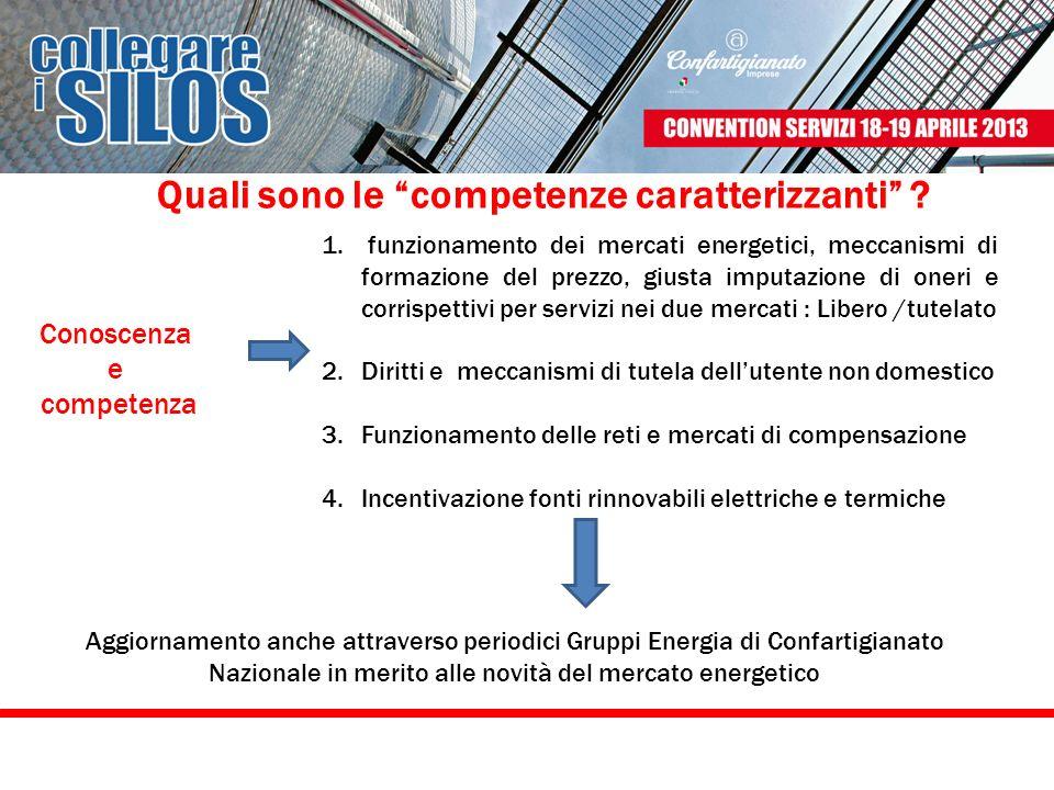 Quali sono le competenze caratterizzanti ? 1. funzionamento dei mercati energetici, meccanismi di formazione del prezzo, giusta imputazione di oneri e