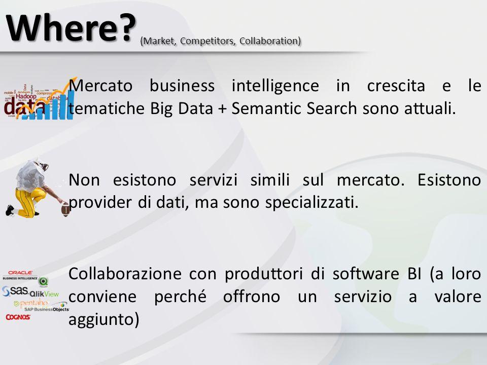Where? (Market, Competitors, Collaboration) Mercato business intelligence in crescita e le tematiche Big Data + Semantic Search sono attuali. Non esis