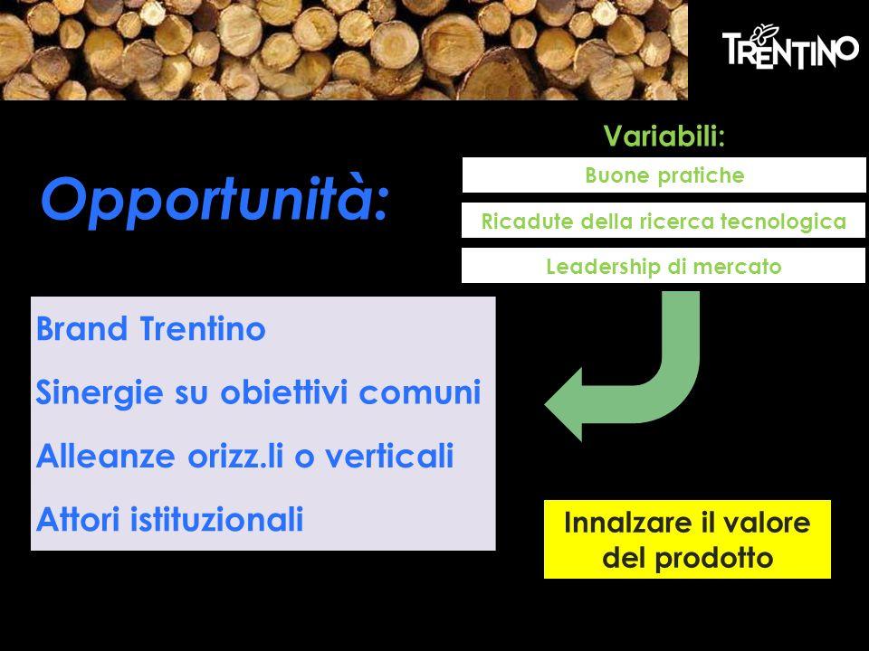 Brand Trentino Sinergie su obiettivi comuni Alleanze orizz.li o verticali Attori istituzionali Opportunità: Variabili: Buone pratiche Ricadute della ricerca tecnologica Innalzare il valore del prodotto Leadership di mercato