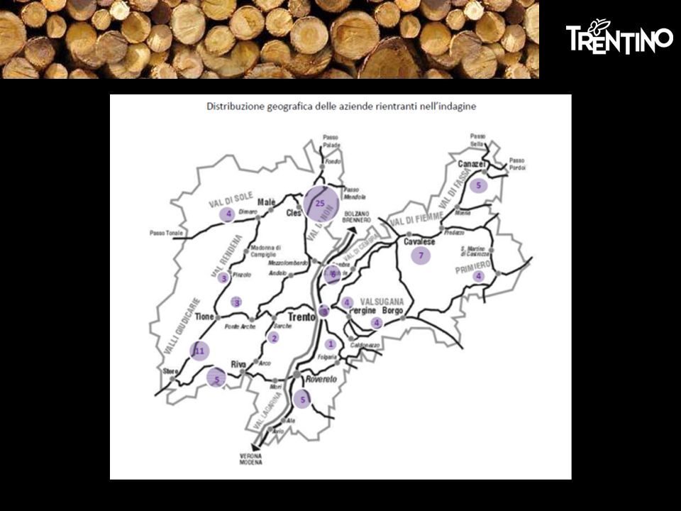 Radicamento sul territorio Flessibilità Ubicazione geografica Risorse umane e naturali Punti di forza: Variabili: Commercializzazione legno TN Mercato nazionale Rinsaldare i rapporti di filiera