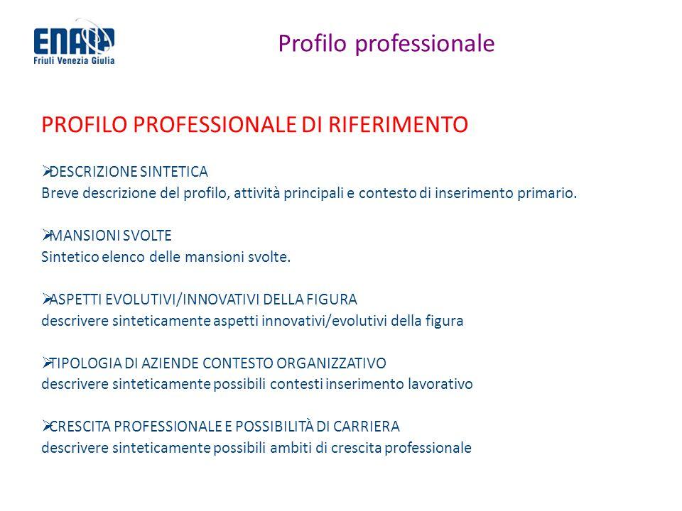 Profilo professionale PROFILO PROFESSIONALE DI RIFERIMENTO DESCRIZIONE SINTETICA Breve descrizione del profilo, attività principali e contesto di inse