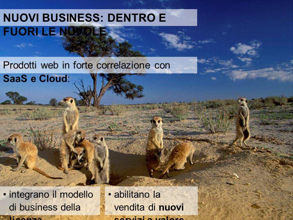 Prodotti web in forte correlazione con SaaS e Cloud: integrano il modello di business della licenza abilitano la vendita di nuovi servizi a valore NUOVI BUSINESS: DENTRO E FUORI LE NUVOLE