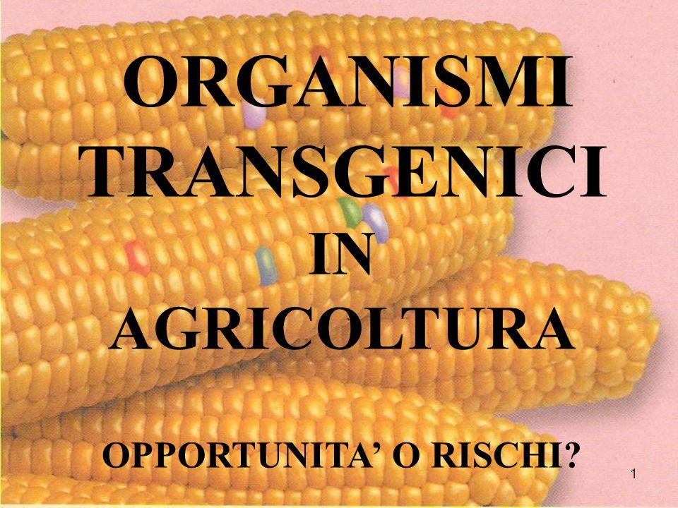 IL PROBLEMA OGM Nessuno è attualmente in grado di stabilire i reali effetti (positivi o negativi) sulla salute umana e sullambiente degli Organismi Transgenici Una cosa è certa: - AUMENTANO I RISCHI Siamo in presenza di incertezza assoluta - NON MANTENGONO LE PROMESSE - NON DETERMINANO GRANDI VANTAGGI